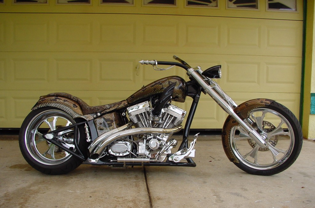 Boa bike