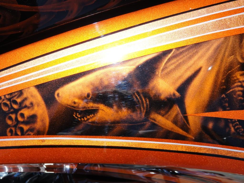 Pirate bike shark detail