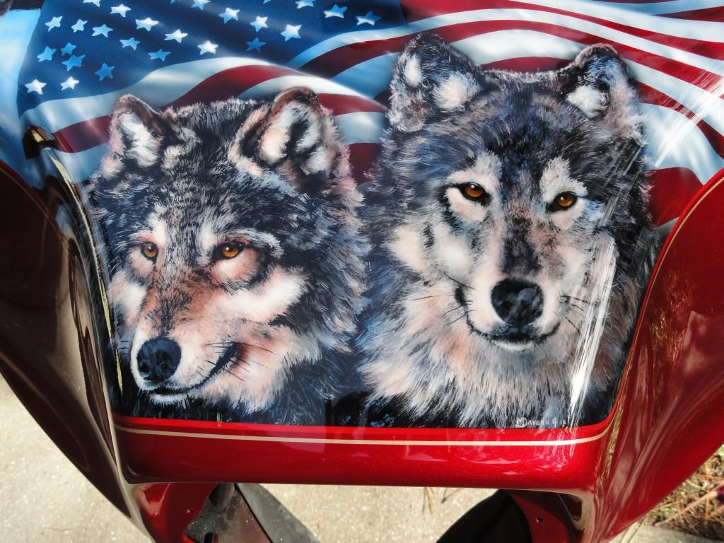 wolf trio close up