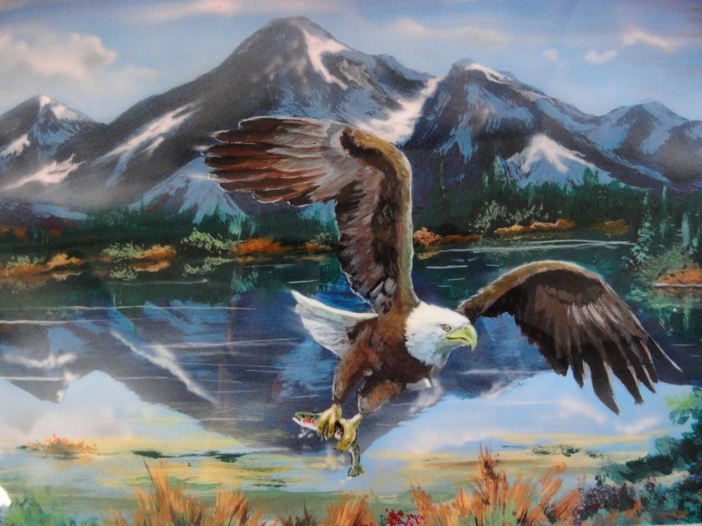 Eagle with rainbow trout